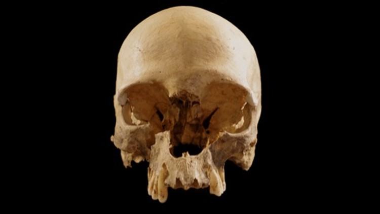 This Mysterious Human Skull Was Found in a Cave in Italy But No One Knows How