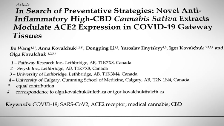 VERIFY: A Canadian study found certain CBD strains could lower the chances of COVID infection - but more research is needed.