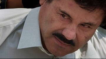 El Chapo was whisked away within hours of sentencing: Lawyer