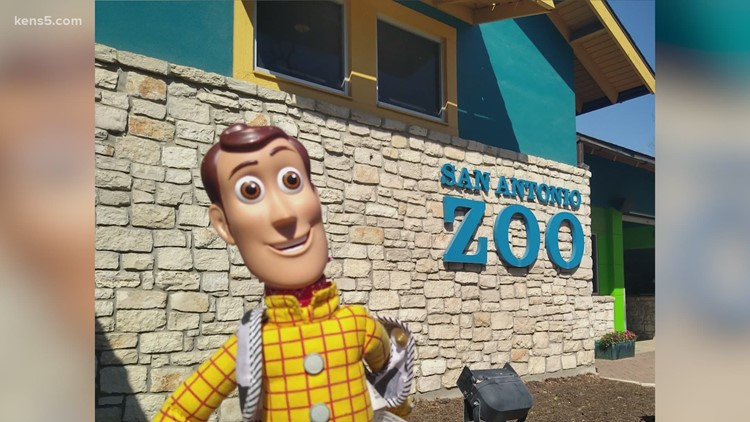 Woody doll reunited with his owner after being lost at San Antonio Zoo