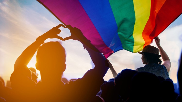 Toledo Pride events extend beyond Live at the Park festivities