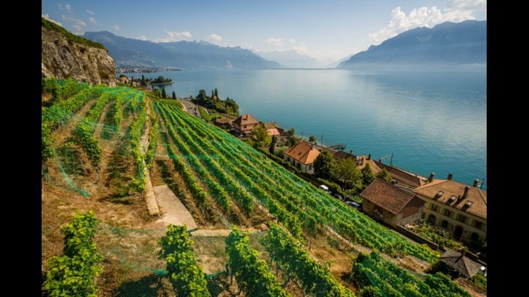 Overlooking the vineyards on the coast of Lake Geneva. (Photo by cdbrphotography / Getty Images)