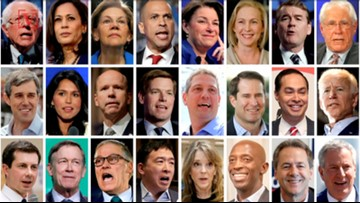 With a Diverse 2020 Field, This Quality in a Candidate is Favored by Democratic Voters: Poll