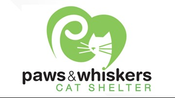 Paws and Whiskers temporarily suspends intakes, adoptions due to highly contagious virus
