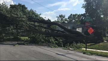 Trees down, houses damaged, power out after storm hits Bowling Green