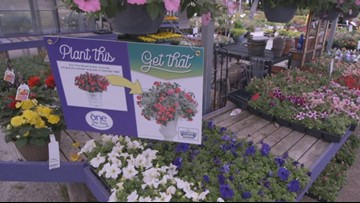 Go 419 is your GO-TO Place for your gardening needs!