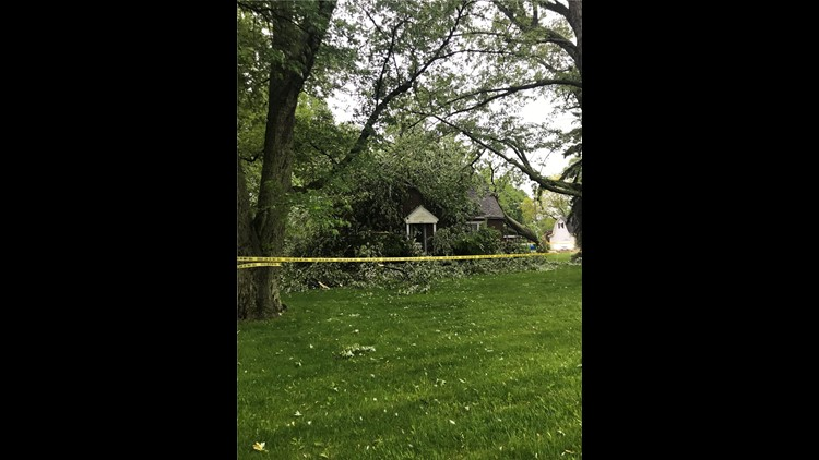 Tree into BG house