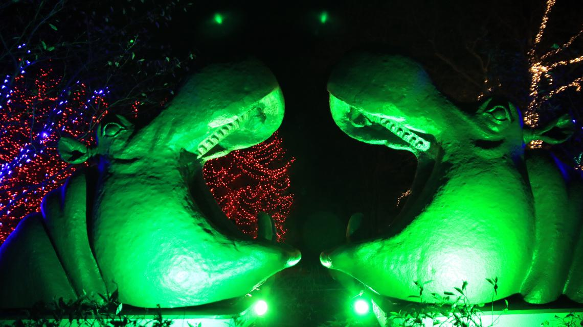 FINAL DAY TO VOTE | Toledo Zoo's Lights Before Christmas again competing for top display in America honors