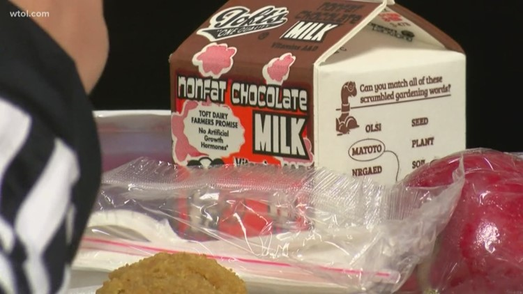 Call 11 for Action: Holland mother wants school lunch policy changed