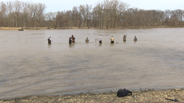 Anglers flock to the Maumee River for the annual walleye run