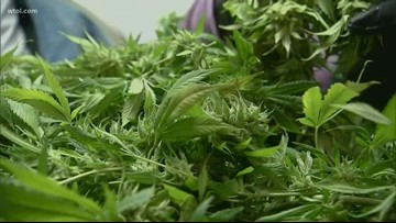 State board could vote on adding new conditions for medical pot