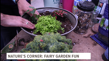 Go 419 is your GO-TO place for your fairy gardening needs!
