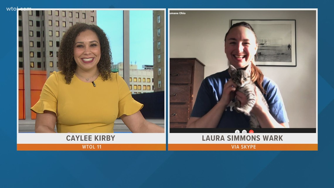 Toledo Humane Society | Your Day Weekend April 10