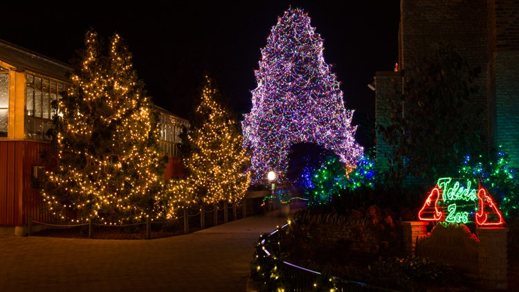 The Big Tree is lit and the Lights Before Christmas are now in full swing