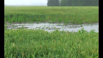 USDA: Ohio has its worst weather-prevented planting season