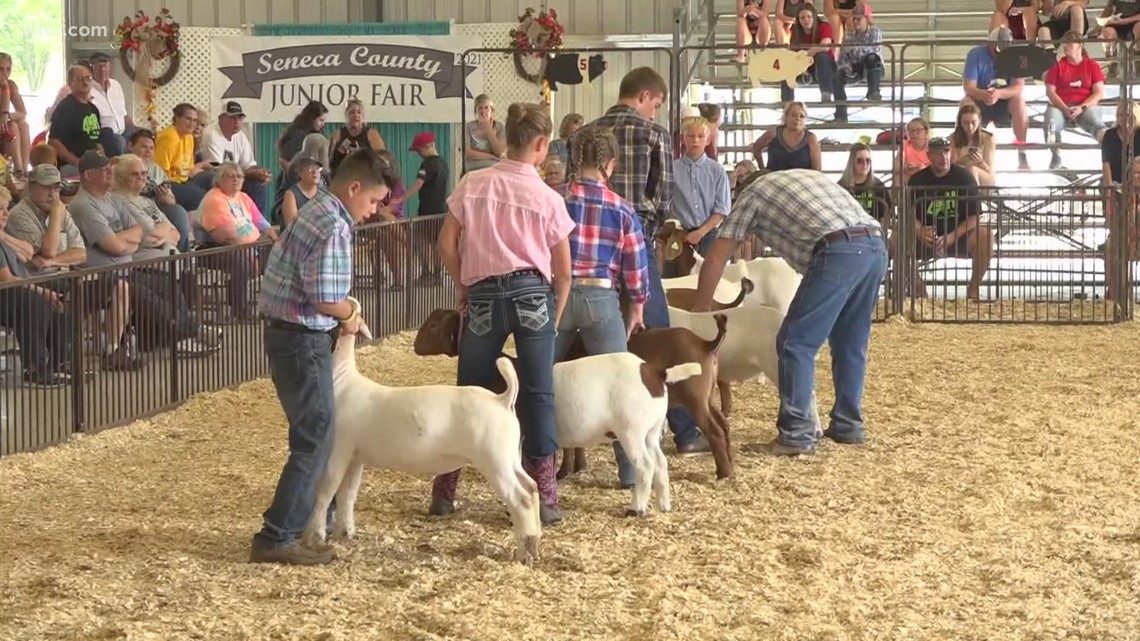 Seneca County Fair returns with full schedule of events