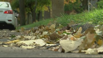Leaf collection resumes for city of Toledo