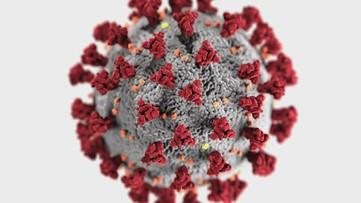 Loss of taste very common in coronavirus patients, University of Toledo researchers say