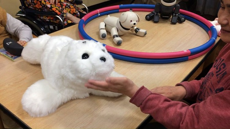 From Toledo to the Far East: Robots caring for senior citizens in Japan