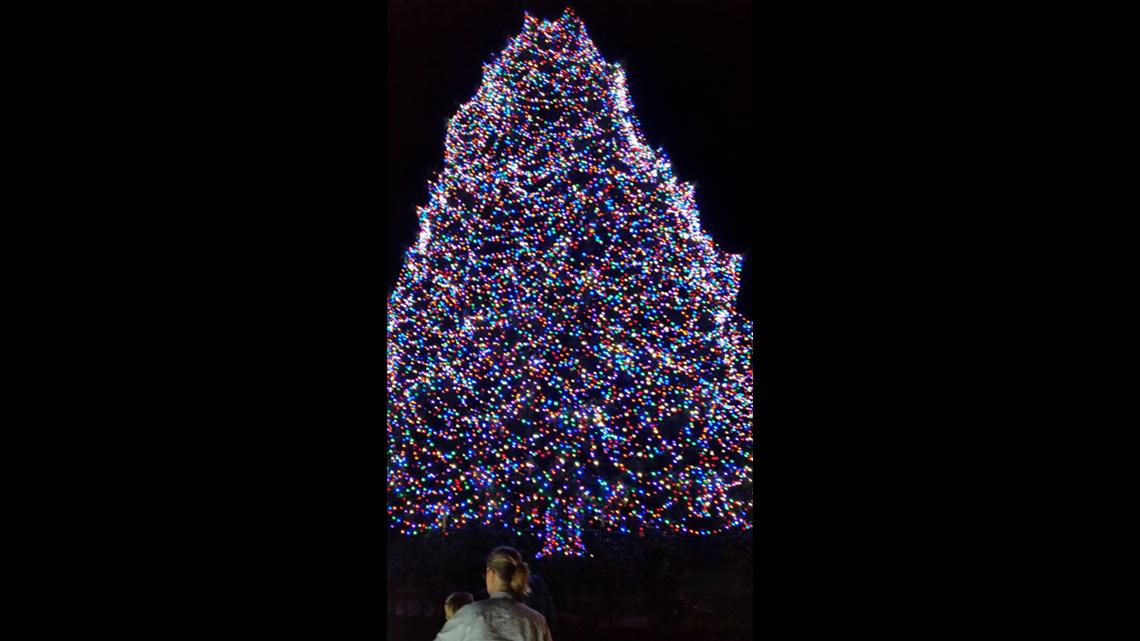 Toledo Zoo already preparing for 'Lights Before Christmas'