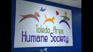 TAHS gets ready for 7th annual PawVillion fundraiser