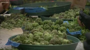 New effort underway to legalize recreational marijuana in Ohio