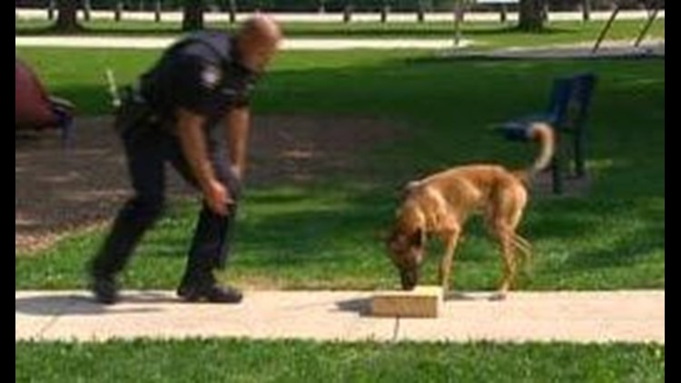 New K9 for Fostoria Police Department