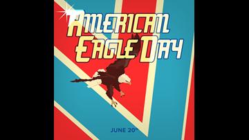 Celebrate the Bald Eagle on National American Eagle Day