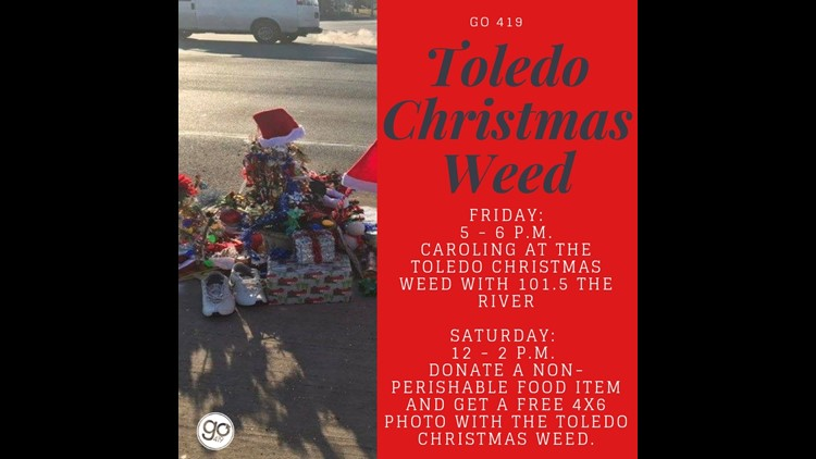 Go 419 Toledo Christmas Weed: Things to do