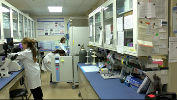 Komen awards grant to UT researchers studying drug-resistant breast cancer