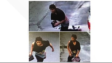 TPD asking for help identifying alleged purse thief
