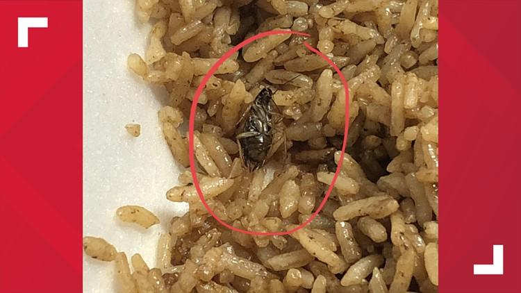 Rice King roach