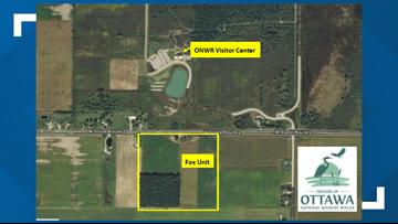Local volunteer group receives $43K grant to restore wetlands
