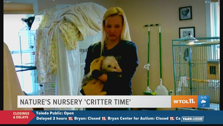 'Critter Time' with Nature's Nursery | Your Day