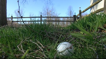 Call 11 for Action: Toledo residents worried errant golf balls will strike children