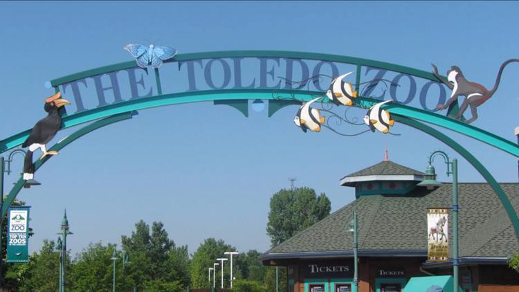 Toledo Zoo hosting seasonal job fair Tuesday, Oct. 5 | What you should know