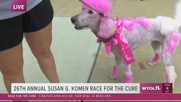 Race for the Cure - Even the dogs are in the pink today!