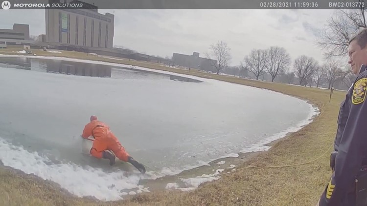 Heroic efforts from Sylvania Township Fire crews save dog that fell into icy pond