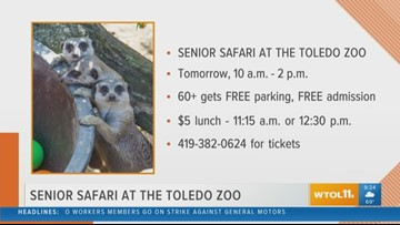 Toledo Zoo Senior Safari