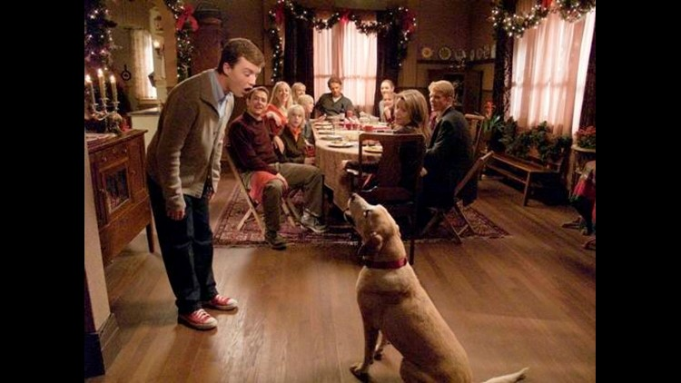 A Dog Named Christmas.Hallmark Hall Of Fame S A Dog Named Christmas Airs On Wtol