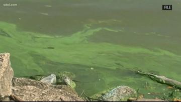 Maumee Bay State Park no-swim advisory dropped