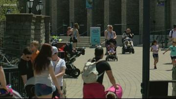 Toledo Zoo to host 'Wild About Art' 2-day art fair