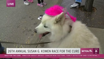 Race for the Cure: Another pink pooch - Shiloh's people are walking in memory today
