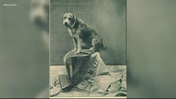 Toledo marks last stop for famous railroad dog