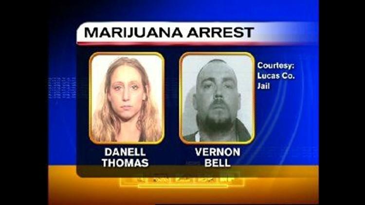 West Toledo drug bust yields 423 pot plants | wtol com