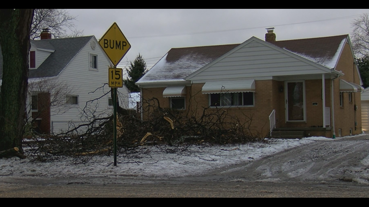 Engage Toledo dispatchers could take over one thousand fallen tree calls Tuesday