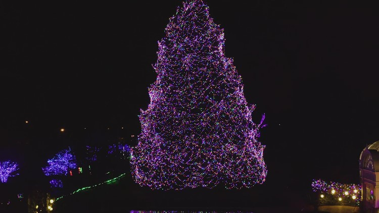Toledo Zoo Lights Before Christmas | Reserve your tickets now for your magical holiday visits