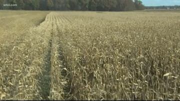 H2Ohio providing $30 million for Ohio farmers to change the way they manage crops