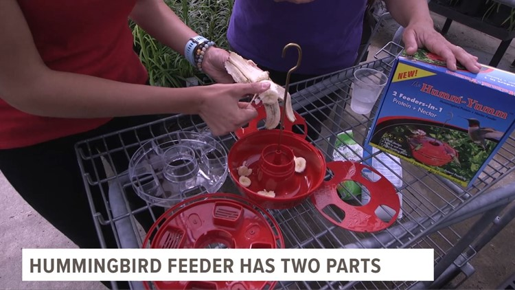 Have you tried a Humm-Yumm feeder?* | wtol com