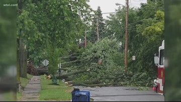 Strong storms cause damage to Bowling Green